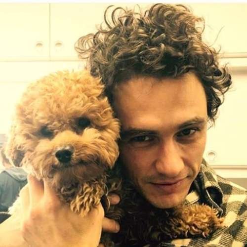 james franco curly hairstyle