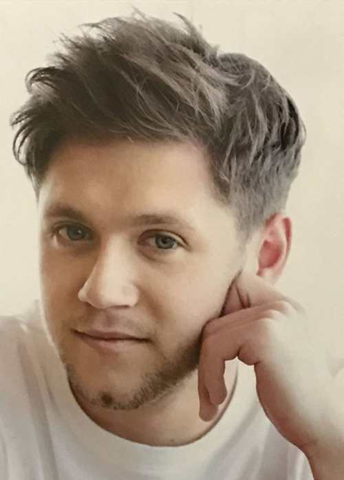 niall horan hairstyle 2017