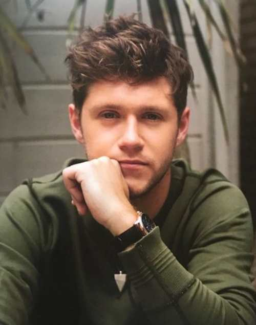 niall horan hairstyle 2018 messy cool haircut