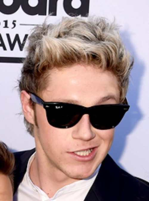 niall horan hairstyles 2015