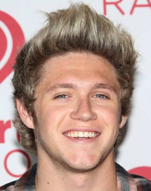 niall horan upper cut color 2013 haircut